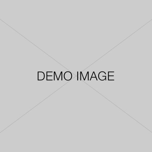 demo-image 3